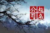 羊羯子火锅餐饮管理最新公司起名大全免费